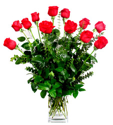 Our Best Premium Roses in a Contemperary Vase from Dallas Sympathy Florist in Dallas, TX