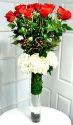 18 Exquisite Red Roses & Hydrangea Internet Special !! from Dallas Sympathy Florist in Dallas, TX
