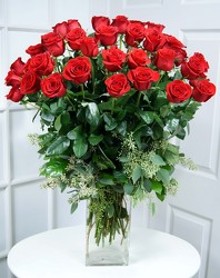 48 Gorgeous Red Roses Internet Special !! from Dallas Sympathy Florist in Dallas, TX