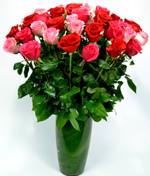 36 Assorted Pink and Red Roses from Dallas Sympathy Florist in Dallas, TX